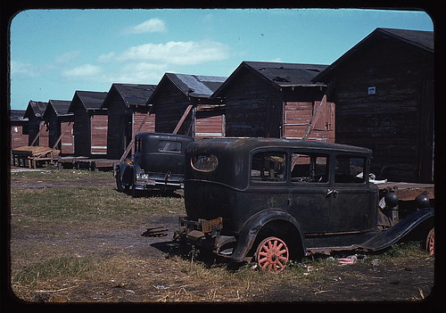 Shacks condemned by Board of Health, formerly (?) occupied by migrant workers and pickers, Belle Glade, Fla. (LOC)