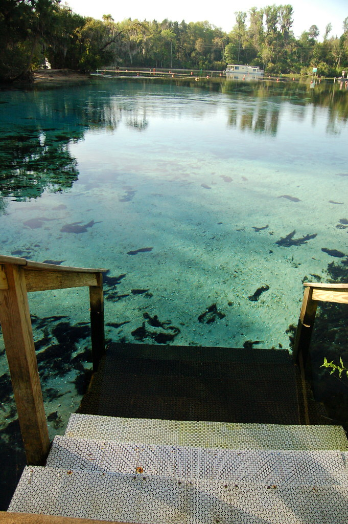 Pat S Island Trailhead To Hidden Pond