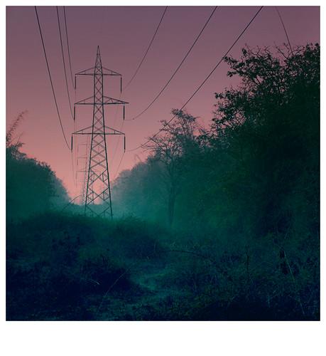 morning pink color colour misty fog forest soft earlymorning jungle mysterious beforesunrise saikat mistymorning moninglight saicode