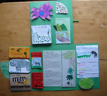example of a book report
