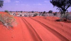 outback_jpg
