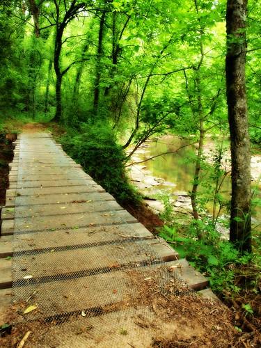 footbridge path tennessee olympus columbia trail zuiko picnik maury pedestrianbridge biketrail zd harpethriver e520 1442f3556 chickasawtrace