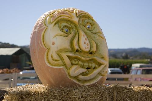 1703421448 5f0cc00a97 Funny Pumpkin