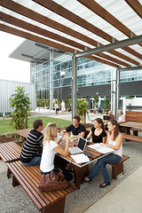 Students studying outside Bond University