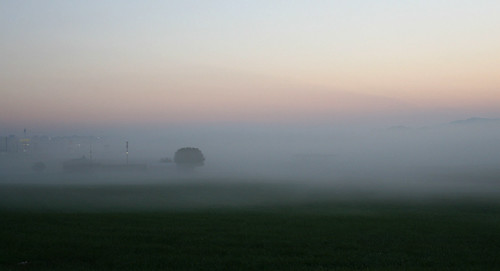 fog sunrise airport tennessee powell knoxcounty powellairport