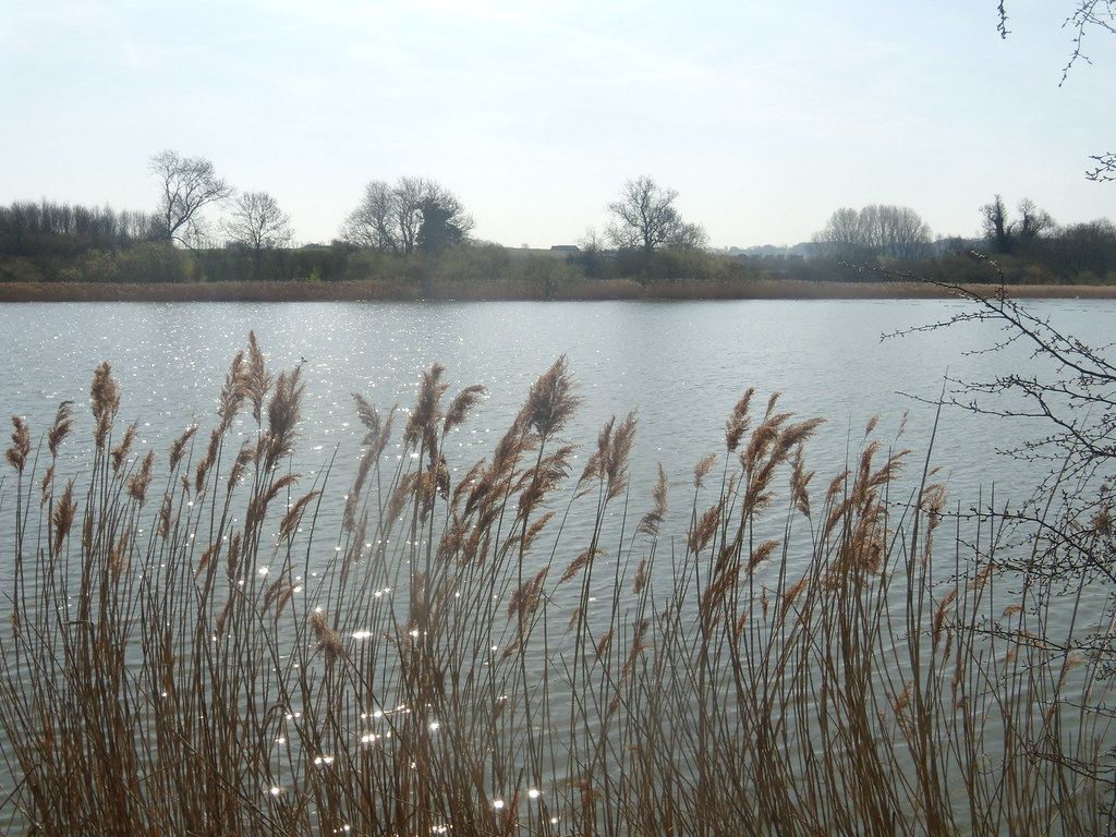 A reservoir Tring to Wendover