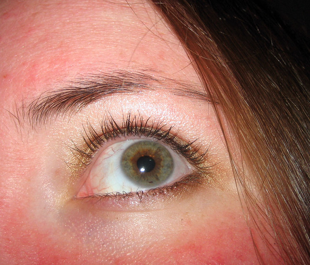 hazel eyes   Flickr - Photo Sharing!