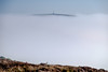 Frost & Fog at Headon Warren - DSCF2192