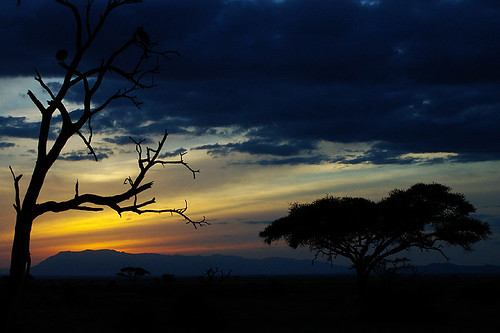 africa sky sunsets soe afican flickrsbest mywinners abigfave africansunsets anawesomeshot diamondclassphotographer flickrdiamond excellentphotographerawards