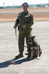 army(1.0), law enforcement(1.0), dog(1.0), soldier(1.0), pet(1.0), police dog(1.0), military(1.0),