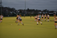 stick and ball games, sports, competition event, team sport, hockey, field hockey, ball game, tournament,