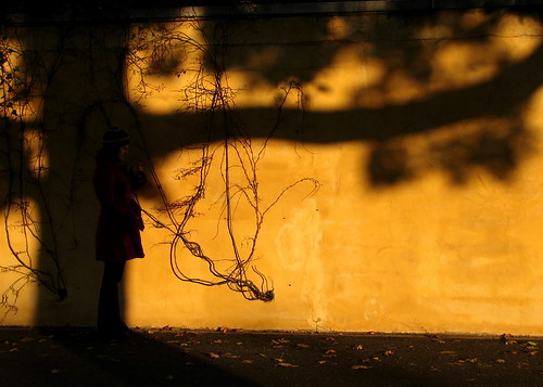 autumn sunset black tree fall yellow wall shadows magic sculptures gfs lightshadows blackyellow groundforsculptures magicshadows