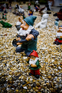 Hooded gnomes on gravels...