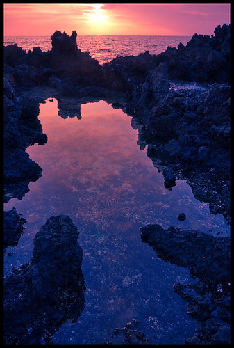 sunset david reflection andy hawaii lava karen suzy marshall paula ami cameron bigisland sonya tidepool kona kealakekuabay manini 19741