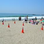 Laguna Beach Trip 02