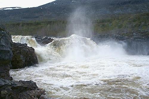 Stabbursdalen National Park - 8