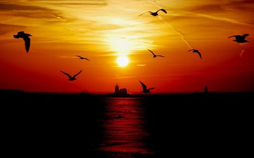 sunset ohio sky sun lighthouse lakeerie cleveland greatlakes