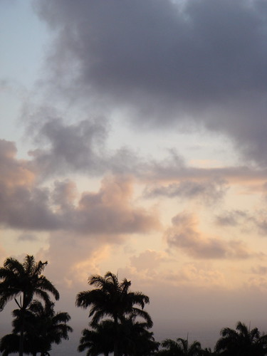 sky holiday clouds sunrise island dawn palm caribbean stkitts alexhopkins ottleysplantationinn