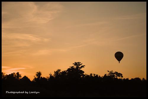 sun nature sunshine sunrise orlando nikon unitedstates florida randomness hotairballoon i4 d3000