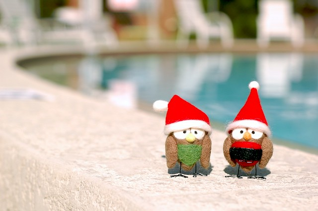 Christmas In Florida Images.Christmas In Florida Two Santas Hanging By The Pool