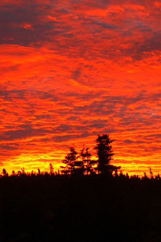 nature sunrise newfoundland mygarden portugalcovestphilips