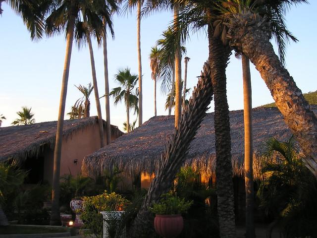 Hotel palmas de cortez flickr photo sharing