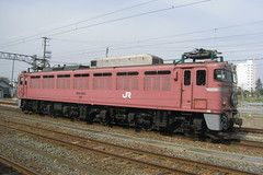 JR East EF81 / EF81 日本海