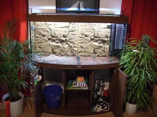 bmw treff forum fotos von euren aquarien. Black Bedroom Furniture Sets. Home Design Ideas