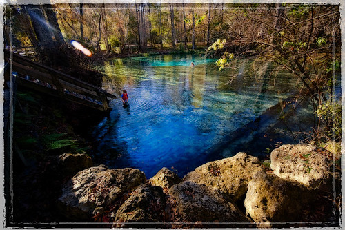 seascape water spring florida springs ginniesprings gilchristcounty ginniespringsflorida floridagilchristcountyginniespringsnewyearsdaydaytripslandscaperecreationriversantaferiverspringswater
