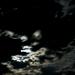 Scorpion Moon by erikrasmussen
