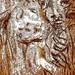 22678298548_fd61d4b6f9_b by THE ART OF STEFAN KRIKL