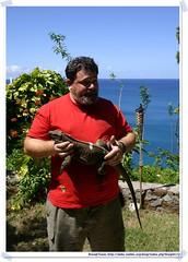 20041016_Guana@BVI_Iguana_003_A