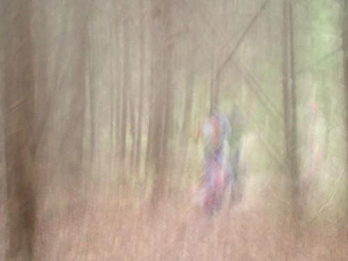 Walkers in wood