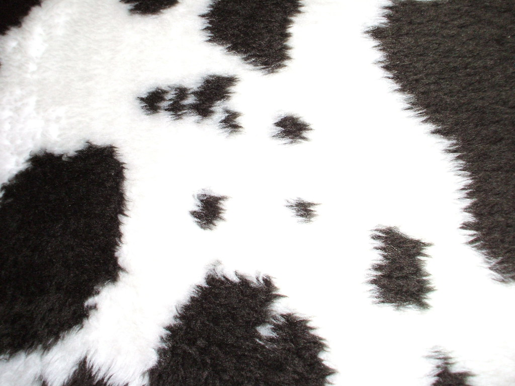 cow print car seat covers. Black Bedroom Furniture Sets. Home Design Ideas