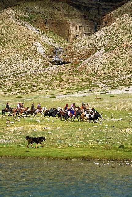 Nomads Kailash Kora