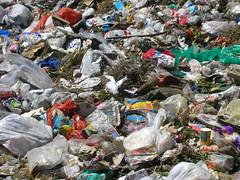 scrap(1.0), litter(1.0), waste(1.0),