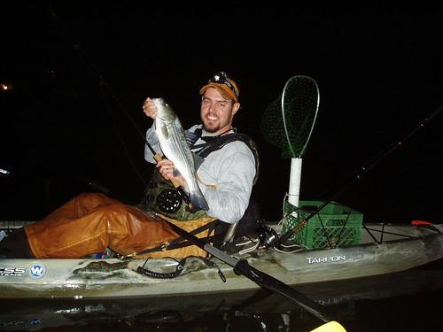 Light Line Striper Fishing