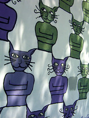 Purple and Green cats close up
