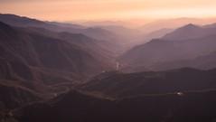Sierra Burn