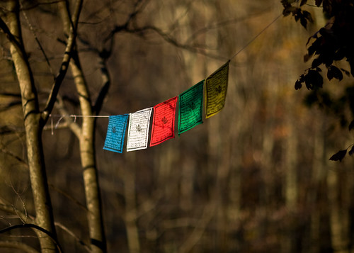 raw flags prayerflags lightroom myeverydaylife canoneos5d lungta canonef85mmf12liiusm
