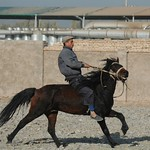 Uighur Man and Horse - Kashgar, China