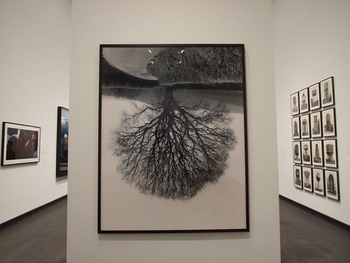 2203656041 ab42a5206b 6 Cool Photography Exhibitions in NYC to Get You Inspired
