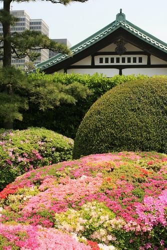Saison 1 2007 2008 02 05 365 photos autour du monde for Jardin imperial