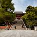 Tsurugaoka Hachiman shinto shrine : Kamakura, Japan / Japón by Lost in Japan, by Miguel Michán