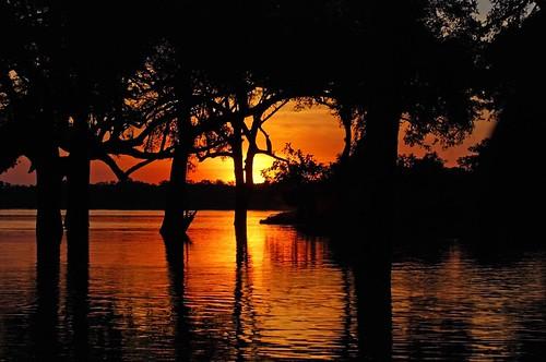 africa zambia potofgold luangwavalley luangwariver excellentphotographerawards preservetnc07 flickrstas aroundtheworldlandscapes plaward perfectphotographeraward2fave2 llovemypic rickspixtop50 showmeyourqualitypixels lunagwavalley southlunagwanationalparkzambia normancarrsafaris