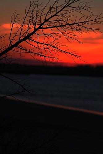 sunsets figureeightisland figure8island beachandbirds