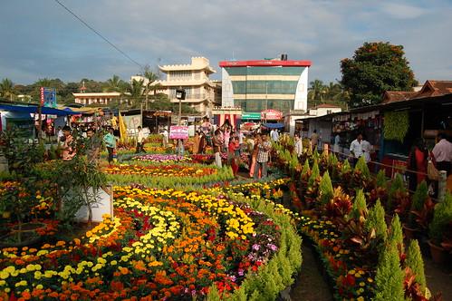 Blumenpflanzen in der Mitte, an den Seiten Verkaufsbuden, im Hintergrund moderne Gebäude.
