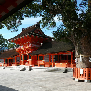USA main shrine (oblique with tree) - 無料写真検索fotoq
