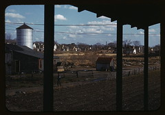 [Small farm of John P. Collins, Taunton, Mass.]  (LOC) by The Library of Congress