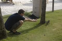 Aaron and the Iguana